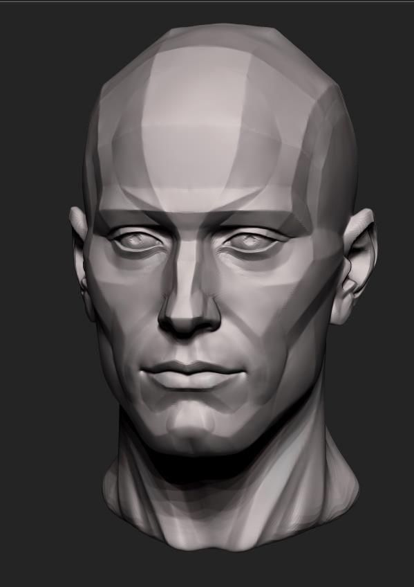 automob 3d anatomy tutorial - 564×798
